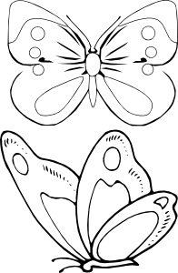 Бабочки раскраска