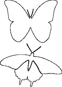 Бабочки трафарет